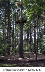 Climbing tree at Park Hulsbeek in Oldenzaal, Netherlands.