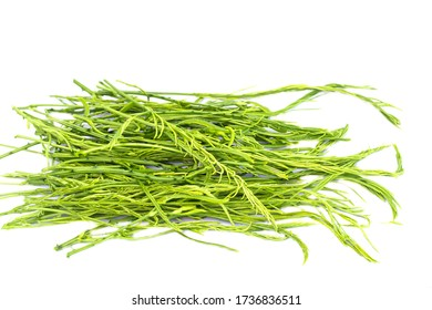 Climbing Wattle or Acacia vegetable isolate on white background
