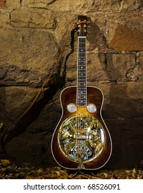 Cline-smith Dobro Guitar and Autumn Leaves
