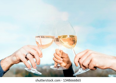clinking and toasting hanging up the wine glasses celebrating life and friendship