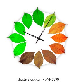 Clock with leaves instead of numbers on white background