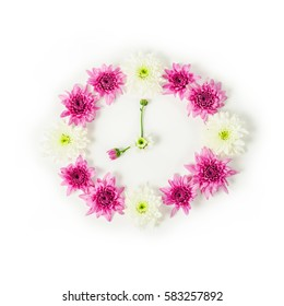 Clock made from pink chrysanthemum flower on white background.