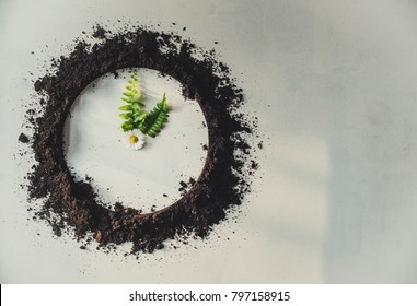 Clock made of soil and plants