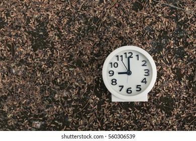 Clock in nature