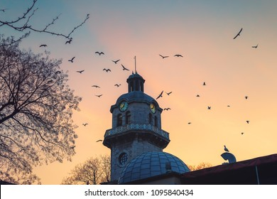 Clock tower in the city centre of Varna, Bulgaria and flying seagull birds against sunset sky.