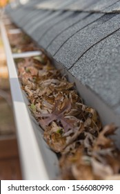 Clogged gutter near roof shingles of residential house full of dried leaves and dirty need to clean-up. Blocked drain pipe on rooftop. Gutter cleaning and home maintenance concept