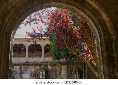 Cloister of processions of the Royal Monastery of Oia with its beautiful colored trees.