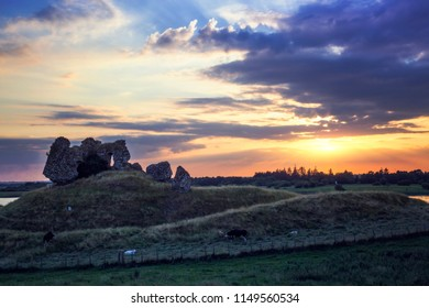 Clonmacnoise Castle Ruins and cattle. County Offaly. Ireland