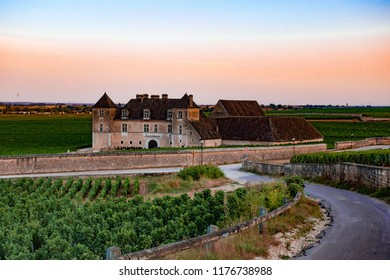 Clos du Vougeot castle, Burgundy-Franche- Comte, France. The picture was taken in August 2018. Burgundy is famous for the wine production. On the picture you can see the wine grapes cultivation.