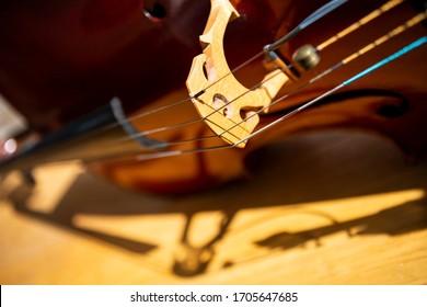 Close up abstract of a cello