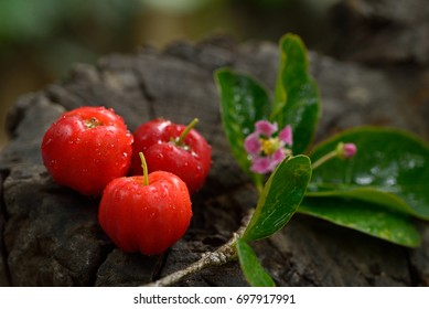 Close up Acerola cherry on the old wooden, High vitamin C and antioxidant fruits