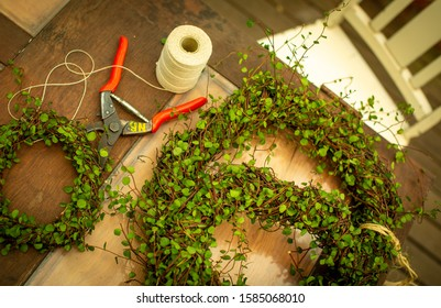 Close up aerial view of maidenhair vine (muehlenbeckia) Christmas wreaths, wooden chair, red secateurs and string.