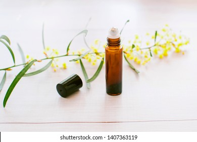 Close up of amber essential oil roller with black lid off on white wooden backdrop with wattle flower in the background