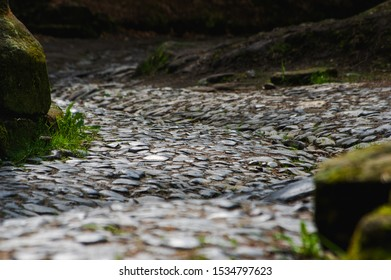 close up of ancient historic cobble stone paved street near Dolny Mlyn in Bohemian Switzerland national park