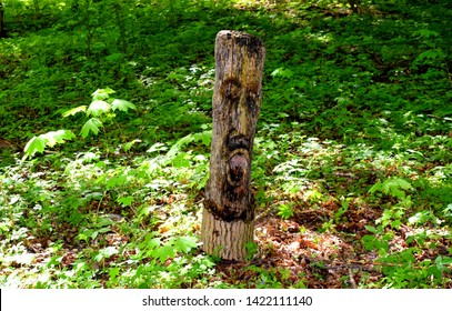 A close up of an ancient wooden sculpture resembling a shaman or a witch doctor found in the middle of Polish forest or moor surrounded with shrubs, plants, moss, and other plands during a spring day