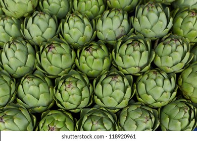 Close up artichoke green nature background