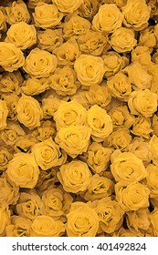 close up of artificial yellow roses