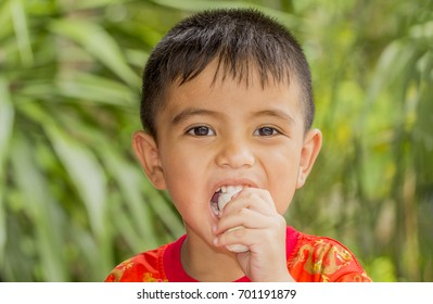 Close up of Asian little boy eating cultivated banana and looking at camera