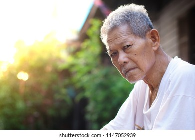 Close up of Asian old man face. Asian elder, he's 80 years old, sitting in the garden. Elder Day or older person day Concept. Selective focus and free space for text.