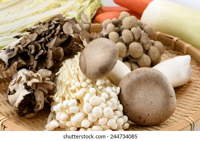 Close up of an Assorted of mushrooms on Colander.
