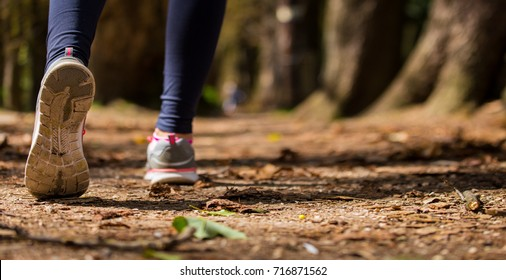 Close up of an athlete's feet wearing sports shoes on a challenging dirt track. Trail running workout on rocky terrain outdoors.