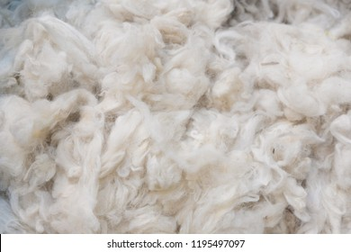 Close up of Australian Merino Wool Warm Craft Fibre/Fabric Industry Concept