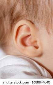 Close up of baby ear. The baby girl is 2 months old.