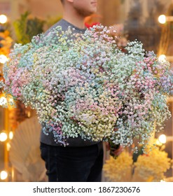 Close up of baby's breath flower (Gypsophila) bouquet. Man holding big and beautiful mono bouquet of colorful gypsophila