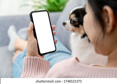 Close up back rear view of young asian female with pet hold phone on white blank screen for montage mockup display device watch screen in concept of lifestyle with digital technology in millennial.