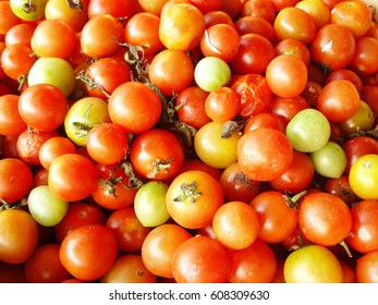 Close up background of group fresh tomato for healthy diet food.