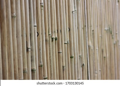 Close up of bamboo garden fence with blurry background