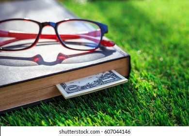 Close up banknote of US hidden in book on green grass
