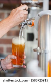 Close Up Of Bartender Pouring Pint Of Beer Behind Counter - Shutterstock ID 1586725915