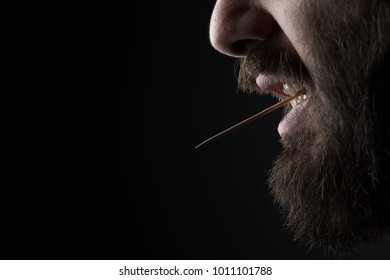 Close Up of a Bearded Man with a Wood Toothpick in His Mouth on Black Background