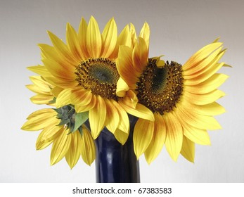 close up beautiful bouquet of sunflowers in a vase