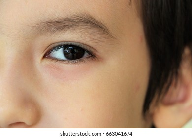 Close up beautiful brown left eye of a cute boy.