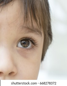 Close up of a beautiful eyes brown of a little boy looking at the play room, Macro of right side of eyes kid
