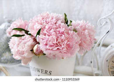 close up of beautiful fresh peony flower bunch in pink color
