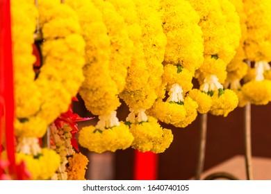 Close up of Beautiful marigold garland