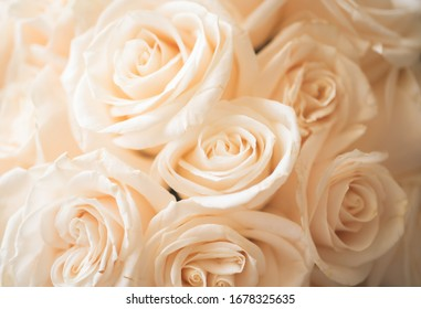 Close up of a beautiful Wedding bouquet  A flower bouquet is a collection of flowers in a creative arrangement There are many different bridal bouquet styles.