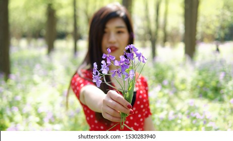 Close up of beautiful wild purple flowers in hand with friendly smiling young woman in red dress in sunny forest park background, give you flowers as gift, focused on foreground.