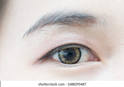 Close up beautiful woman eye with contact lens.Macro human eye.Female makeup and cosmetics beauty face. Anatomy body human concept.