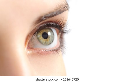 Close up of a beautiful woman green eye isolated on a white background