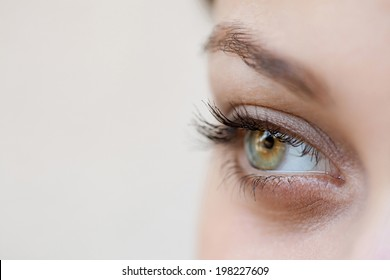 Close up beauty portrait view of an attractive young woman eye and pupil looking up to the side, being thoughtful and calm, wearing cosmetics. Healthy skin, sight and beauty care, wellness.