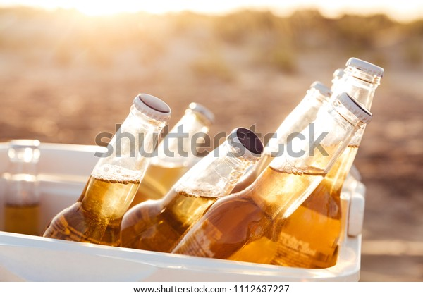 Close up of beer bottles cooling in a fridge at the beach