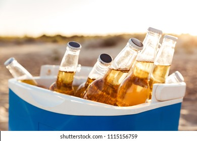 Close up of beer bottles cooling in an icebox at the beach
