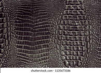 Close up of black luxury crocodile skin leather for texture and background.