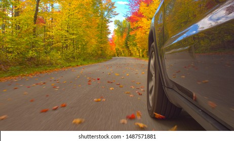 CLOSE UP Black SUV car driving along double yellow line road past colorful trees on autumn day. Detail of car tire spinning while driving through bright autumn forest in sunny fall. Car tyre rolling