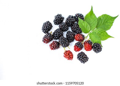 Close up blackberries red and black color with green leaf on white background
