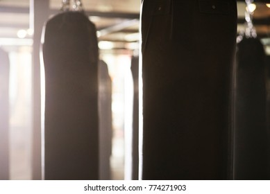 Close up blank punching bags in misty cinematic boxing gym.